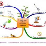 Cultiver son identité numérique en 7 points